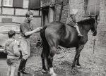 1963 Ralf Hamacher , Pferd Flinette und Kinder