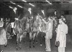 1963 Siegerehrung Kornspringerhalle li. Michael Neffin