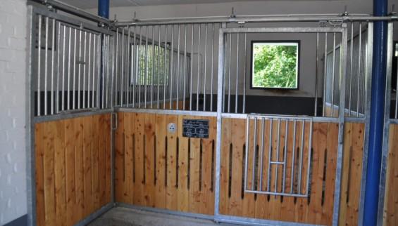 Pferdebox im Kornspringer Reitstall für Schul- und Privatpferde