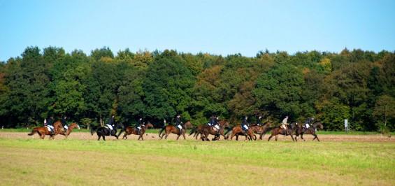 Der alljährliche Herbstritt des Kornspringer Reitstalls durch den Königsforst bis nach Forsbach