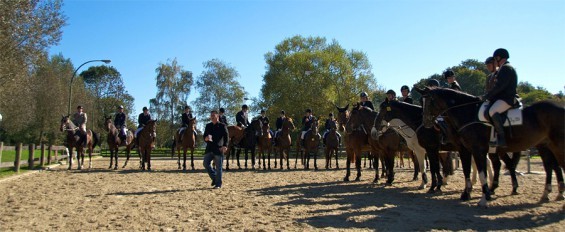 Aufstellung vieler Kornspringer Reiter mit ihren Pferden